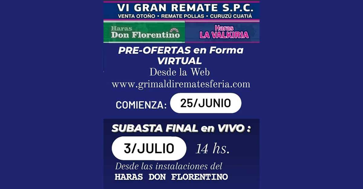 VI GRAN REMATE SPC
